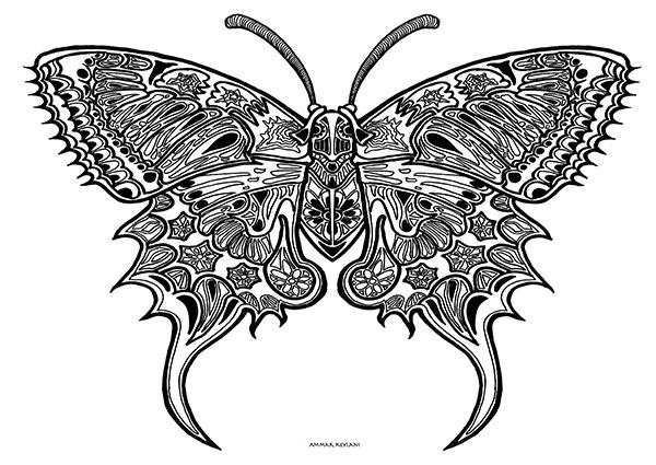 Bilde av Butterfly Fin Av Ammar Keylani